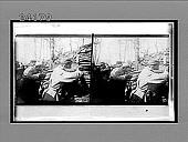 view [Military.] 11978 Interpositive digital asset: [Military.] 11978 Interpositive.