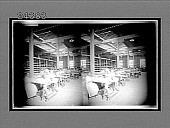 view [Overall of women workers at tables in a factory.] 12229 interpositive digital asset: [Overall of women workers at tables in a factory.] 12229 interpositive.