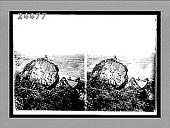 view [Canal.] 12331 Interpositive digital asset: [Canal.] 12331 Interpositive.