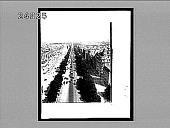 view The favorite drive, Avenue Champs Elysees--from the Arch of Triumph to the Place de la Concorde--Paris. Active no. 535 : Interpositive digital asset: The favorite drive, Avenue Champs Elysees--from the Arch of Triumph to the Place de la Concorde--Paris. Active no. 535 : Interpositive, 1900.