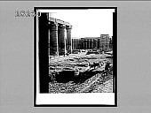 view The most beautiful colonade [colonnade] in Egypt--S. across court of Amemhopet III, Luxor Temple, Thebes. [Active no. 2567 : half-stereo interpositive.] digital asset: The most beautiful colonade [colonnade] in Egypt--S. across court of Amemhopet III, Luxor Temple, Thebes. [Active no. 2567 : half-stereo interpositive.]