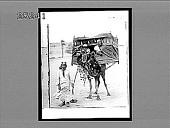 view [Camels.] 2655 Interpositive digital asset: [Camels.] 2655 Interpositive.