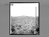 view [Landscape.] 2735 Interpositive digital asset: [Landscape.] 2735 Interpositive.