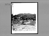 view [War.] 2781 Interpositive digital asset: [War.] 2781 Interpositive.