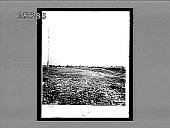view [War.] 2977 Interpositive digital asset: [War.] 2977 Interpositive.