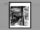 view [Art.] 4230 Interpositive digital asset: [Art.] 4230 Interpositive.