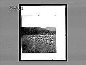 view Volley fire drill--Cadets, West Point Military Academy. 5391 interpositive digital asset: Volley fire drill--Cadets, West Point Military Academy. 5391 interpositive.