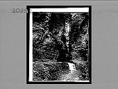 view Fairy Cascade, Watkins Glen. 5485 interpositive digital asset: Fairy Cascade, Watkins Glen. 5485 interpositive.