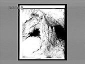 view Dendritic stalagmites in a limestone cave. 6080 Interpositive digital asset: Dendritic stalagmites in a limestone cave. 6080 Interpositive.