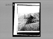 view Modern American harvesting in the great western wheat fields--combined harvester, cutting, threshing and sacking--Walla Walla, Washington. 6227 interpositive digital asset: Modern American harvesting in the great western wheat fields--combined harvester, cutting, threshing and sacking--Walla Walla, Washington. 6227 interpositive.