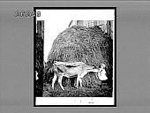 view [Children.] 6872 Interpositive digital asset: [Children.] 6872 Interpositive.