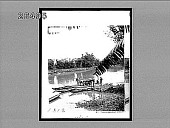 view [Ferry boat on rural river.] 8151 interpositive digital asset: [Ferry boat on rural river.] 8151 interpositive.