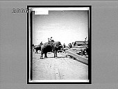 view Elephant laborers piling timber in one of the great riverside yards at Rangoon. 9014 Interpositive digital asset: Elephant laborers piling timber in one of the great riverside yards at Rangoon. 9014 Interpositive.