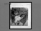 view Hauling a hippopotamus to the shore of Victoria Nyanza, equatorial Africa. 10557 Interpositive digital asset: Hauling a hippopotamus to the shore of Victoria Nyanza, equatorial Africa. 10557 Interpositive
