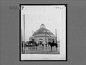 view [Horses.] 10761 Interpositive digital asset: [Horses.] 10761 Interpositive 1910.
