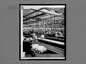 """view """"Stripping"""" and color dyeing skeins, in an immense silk dyeing works, Paterson, N.J. 11442 interpositive digital asset: """"Stripping"""" and color dyeing skeins, in an immense silk dyeing works, Paterson, N.J. 11442 interpositive."""