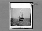 view [Small sailboat at sea.] 22630 interpositive digital asset: [Small sailboat at sea.] 22630 interpositive 1902.
