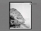 view [Seacoast.] 28984 Interpositive digital asset: [Seacoast.] 28984 Interpositive.