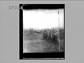 view [Troops on parade field.] 14368 photonegative digital asset number 1
