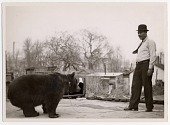 view [Chained bear standing or walking toward male Ludar Gypsy trainer, b&w photoprint.] digital asset: [Chained bear standing or walking toward male Ludar Gypsy trainer, b&w photoprint.]