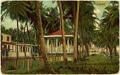 view Parque Borinquen, Santurce, Puerto Rico. [Picture postcard.] digital asset: Parque Borinquen, Santurce, Puerto Rico. [Picture postcard.]
