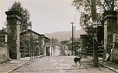 view Calle Cupatitzio, Uruapan, Michoacan [picture postcard] digital asset: Calle Cupatitzio, Uruapan, Michoacan [picture postcard].