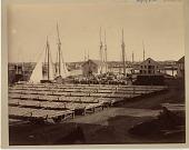 view Wharf of D. C. & H. Babson in Gloucester, Massachusetts [photoprint.] digital asset: Wharf of D. C. & H. Babson in Gloucester, Massachusetts [photoprint.]