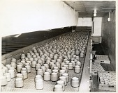view [Unlabeled jars of Noxzema on production line : black and white photoprint] digital asset: [Unlabeled jars of Noxzema on production line : black and white photoprint, ca. 1950-1960.]
