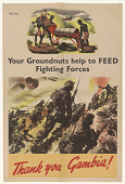 view Your Groundnuts Help to Feed Fighting Forces/ Thank You Gambia! digital asset: Your Groundnuts Help to Feed Fighting Forces/ Thank You Gambia!