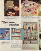 view Tupperware everywhere! [Reproductions of color photographs] digital asset: Tupperware everywhere! [Reproductions of color photographs].