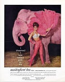 """view Maidenform Advertisement: """"I dreamed I was tickled pink in my maidenform bra."""" 1962. Pink elephant digital asset: Maidenform Advertisement: """"I dreamed I was tickled pink in my maidenform bra."""" 1962. Pink elephant."""