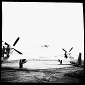 view [Two airplanes, each with a Tuskegee Airman on the wing] [cellulose acetate photonegative] digital asset number 1