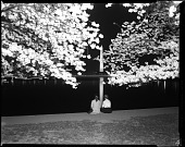 view Two girls view the cherry blossoms at night from the Tidal Basin [cellulose acetate photonegative] digital asset: Two girls view the cherry blossoms at night from the Tidal Basin [cellulose acetate photonegative].