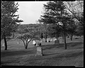 view I Lincoln Memorial Cemetary [sic], 1940 [cellulose acetate photonegative] digital asset: I Lincoln Memorial Cemetary [sic], 1940 [cellulose acetate photonegative].
