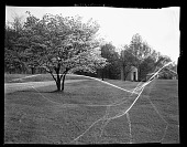 view Lincoln Memorial Cemetery 1940 [cellulose acetate photonegative] digital asset: Lincoln Memorial Cemetery 1940 [cellulose acetate photonegative].