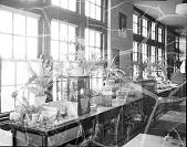 view [Science lab : acetate film photonegative] digital asset: [Science lab : acetate film photonegative, ca. 1930.]