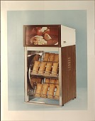 view McDonald's-Apple pie (photographs) digital asset: McDonald's-Apple pie (photographs)