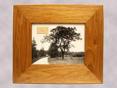 view Framed Photograph of a Butternut Tree digital asset number 1