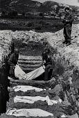 view Korean War - Burial of American Dead digital asset: War in Korea -- Burial of the first American dead