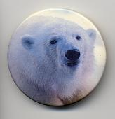 view Environmental Button digital asset: Button, Image of Polar Bear
