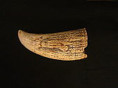 view Scrimshaw Sperm Whale Tooth, 19th Century digital asset number 1