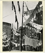 view Court of the First Model Tenement in New York City, 361-365 71st St., 1325-1343 First Ave., 360-364 72nd St. digital asset: Photograph by Berenice Abbott, 'Court of the First Model Tenement in New York City...'