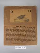 view Infant School Card 17 digital asset: Front.