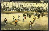 view Bull Fight, The Grand Parade, C. Juarez, Mexico digital asset number 1
