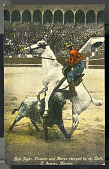 view Bull Fight, Picador and Horse charged by the Bull, C. Juarez, Mexico digital asset number 1