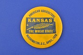 view Kansas for American Agriculture Movement, Protest Pin digital asset number 1