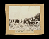 view Gathering Marsh Grass for Camouflage in San Mihiel Drive digital asset number 1