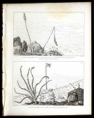 view View from Monument No XVII on the Cerro de Sonora, Looking West towards Monument No XV on the Sierra del Pozo Verde, Plate 37, and View from Monument No XVII, Looking East towards Monument No XVIII, Plate 38 digital asset number 1