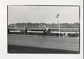 view Horse racing digital asset: Photograph by Ken Regan, horse racing