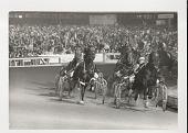 view Horse racing digital asset: Photograph by Ken Regan, harness horse race